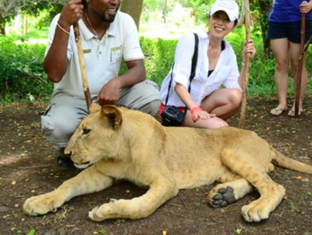 <惬意旅行 毛里求斯一日游  不可错过的非洲探索 与狮同行鸟公园四驱车>(全世界三个与狮同行的地方之一 刺激四驱车 多种玩乐选项)