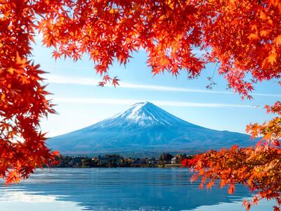 日本本州东京-富士山-京都-大阪6日游