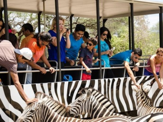 <惬意旅行 毛里求斯Casela鸟公园门票(耳目为之狂喜 心神为之触动)>极速取票 免费入园协助 难忘的动物互动体验