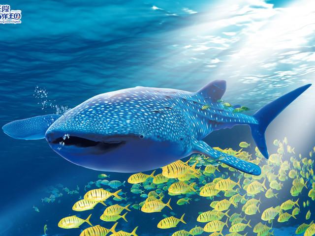 <曼谷暹罗海洋世界门票>当天可定 多款套餐 亲子推荐