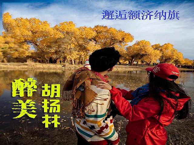 <【包车】★【额济纳旗】4日游>【精致4-6人小包团】【行摄醉美胡杨林】