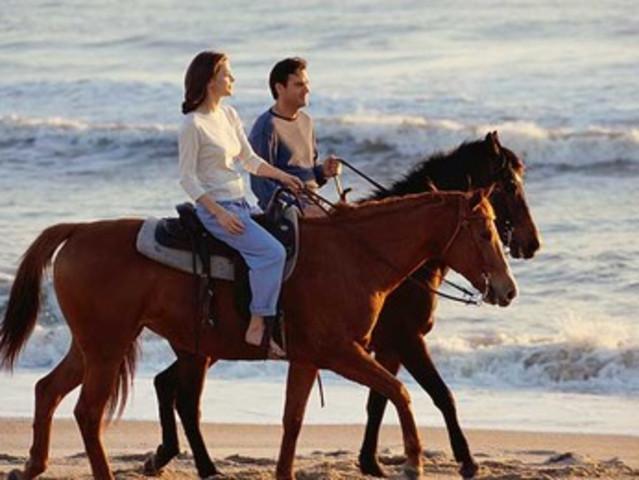 <私密路线 巴厘岛黑沙滩骑马体验一日游>半天私人订制行程+全天10小时用车更自由