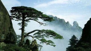 黄山3日游