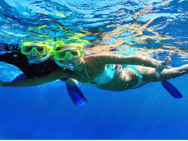 <澳大利亚凯恩斯2晚3日游>大堡礁猎奇当地游