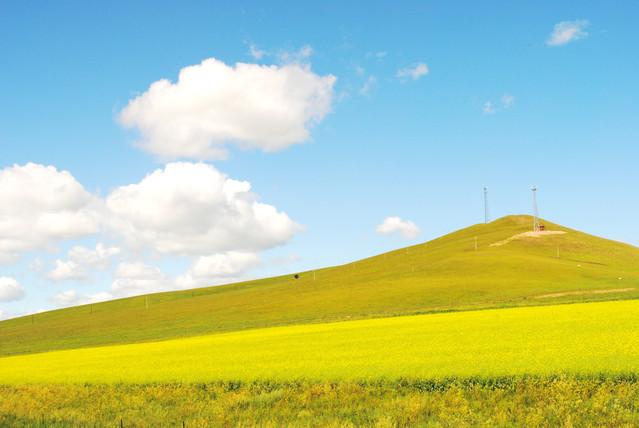 意味 大 草原