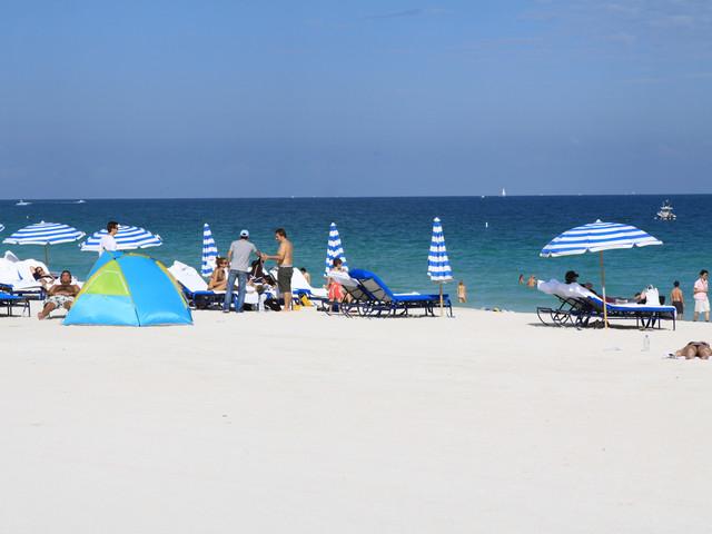 <美国迈阿密+设计区+奥特莱斯+太空中心+奥兰多9晚10日游>限时免费升级万豪酒店,畅游南佛州著名景点西礁岛、奥兰多各大主题乐园